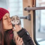 ferret and owner